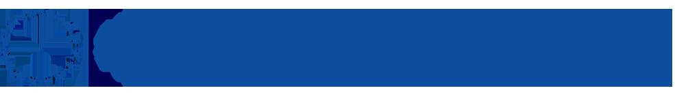 Logo SNSPA RO